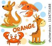 a set of colorful orange... | Shutterstock .eps vector #1136731688