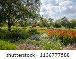 Summer Country Garden Landscap...