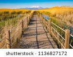wooden bridge walkway path on...   Shutterstock . vector #1136827172