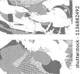 abstract vector background dot... | Shutterstock .eps vector #1136882492
