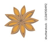 vector anise illustration... | Shutterstock .eps vector #1136930492