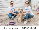 Stock photo smiling volunteers of animals shelter squatting and palming labrador 1136995388