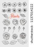 roses and flowers. elegant hand ... | Shutterstock .eps vector #1137014222