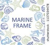 marine frame seashell beach... | Shutterstock .eps vector #1137034478