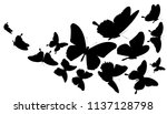 black butterfly  isolated on a... | Shutterstock .eps vector #1137128798