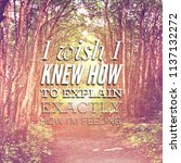 quote   i wish i knew how to... | Shutterstock . vector #1137132272