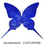 cosmos butterfly   isolated on... | Shutterstock . vector #1137159458