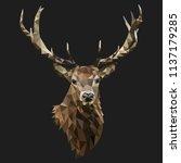 low poly deer vector with...   Shutterstock .eps vector #1137179285
