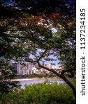 cove of botafogo framed by...   Shutterstock . vector #1137234185