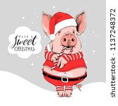Pig In A Santa's Red Costume...