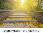landscape with beautiful autumn ... | Shutterstock . vector #1137306212