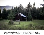 freaky old rural country wood... | Shutterstock . vector #1137332582