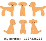 dog toy poodle pose | Shutterstock .eps vector #1137336218