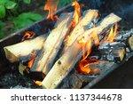 firewood burning in the brazier ... | Shutterstock . vector #1137344678