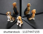 dog ornament reflecting in the... | Shutterstock . vector #1137447155