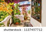 colorful exterior view of a... | Shutterstock . vector #1137457712