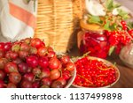 summer sunny  food background... | Shutterstock . vector #1137499898
