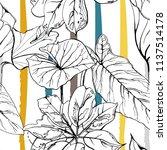 tropical  modern stripes motif. ... | Shutterstock .eps vector #1137514178