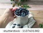 honeysuckle berry in metal cup... | Shutterstock . vector #1137631382