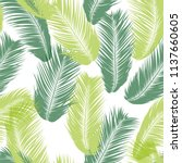 vector feathers. tropical... | Shutterstock .eps vector #1137660605