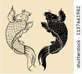 japanese koi carp fish isolate...   Shutterstock .eps vector #1137661982