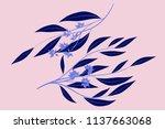 eucalyptus vector. decorative... | Shutterstock .eps vector #1137663068