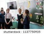 belogorsk  kemerovo region  rf  ... | Shutterstock . vector #1137750935