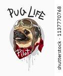 pug dog cartoon in vintage...   Shutterstock .eps vector #1137770768
