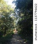 landscape of prasat yai ngao... | Shutterstock . vector #1137796622