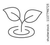 leaf thin line icon  ecology...