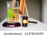 wooden gavel on white table.... | Shutterstock . vector #1137814355