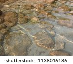 stones on the beach of the... | Shutterstock . vector #1138016186