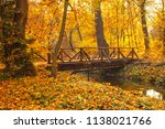 road in the forest in autumn | Shutterstock . vector #1138021766