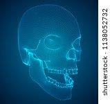vector human skull on color... | Shutterstock .eps vector #1138052732