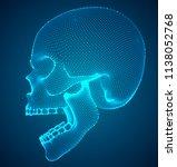 vector human skull on color... | Shutterstock .eps vector #1138052768