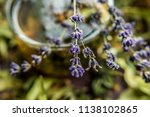 cup of tea lavender provence... | Shutterstock . vector #1138102865