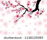 vector cherry blossom for... | Shutterstock .eps vector #1138135085