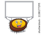 up board sea urchin character... | Shutterstock .eps vector #1138177295
