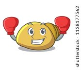 boxing mollusk shell character... | Shutterstock .eps vector #1138177562
