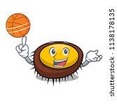 with basketball sea urchin... | Shutterstock .eps vector #1138178135