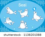 Cute Seal Animal Cartoon Set...