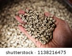 hand holding dried coffee beans ... | Shutterstock . vector #1138216475