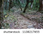 rocky steps in the forest | Shutterstock . vector #1138217855
