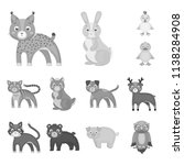 toy animals monochrome icons in ...   Shutterstock .eps vector #1138284908