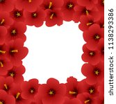 red hibiscus flower   rose of... | Shutterstock .eps vector #1138293386