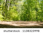 dirty road in green forest. low ... | Shutterstock . vector #1138323998