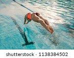 female swimmer diving into...   Shutterstock . vector #1138384502