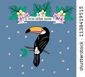 vector cartoon toucan sitting... | Shutterstock .eps vector #1138419515