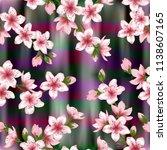 japanese cherry blossom  sakura ... | Shutterstock .eps vector #1138607165
