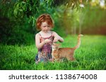 happy little child with red cat.... | Shutterstock . vector #1138674008